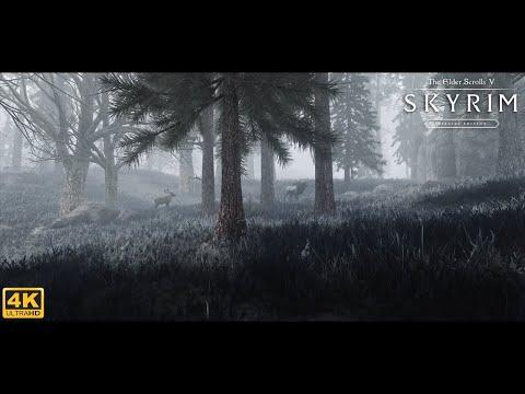 Skyrim Special Edition Ultra Modded 4K 2019 : Best Next Gen Graphics ! W/Modlist