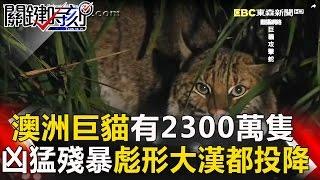 關鍵時刻 20170222節目播出版(有字幕)