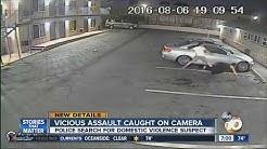 Vicious assault caught on camera