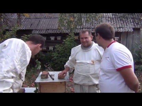 гепатит с лечение госпрограмма украина куда обращаться