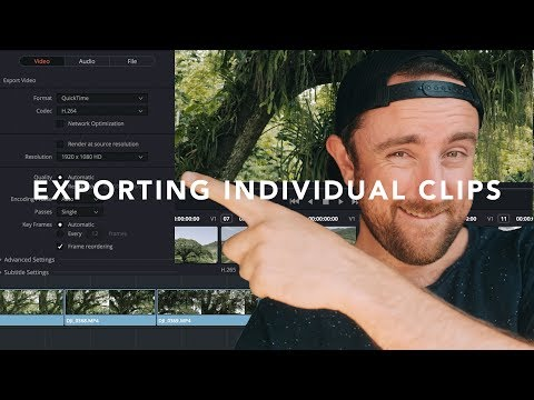 How to Export Individual Clips in DaVinci Resolve