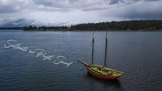 Despite the bustling metropolis built along its shores, salish sea remains a wild place, with quiet nooks and crannies where otters play sailboats pl...