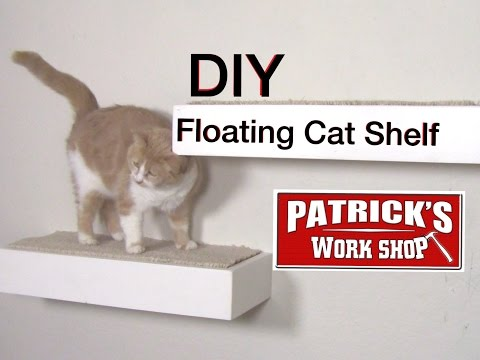 ♦️DIY Floating Cat Shelf♦️