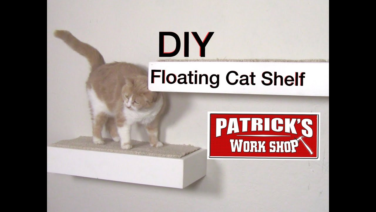 How to make diy floating cat shelf youtube solutioingenieria Gallery