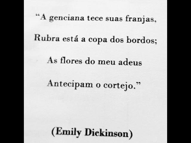 Fragmento poético da Emily Dickinson.