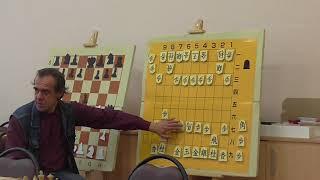 Сёги для шахматистов