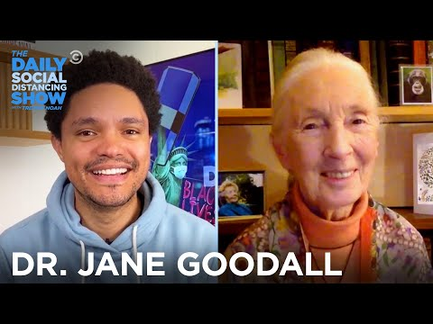 Dr. Jane Goodall - How to Remain Hopeful for the Future - The Daily Social Distancing Show