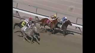 2004 Wood Memorial Stakes - Tapit