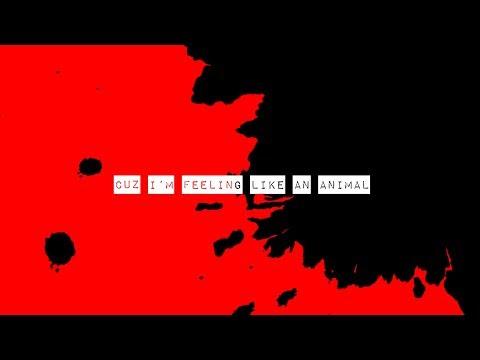 """Sleater-Kinney - New Song """"ANIMAL"""""""