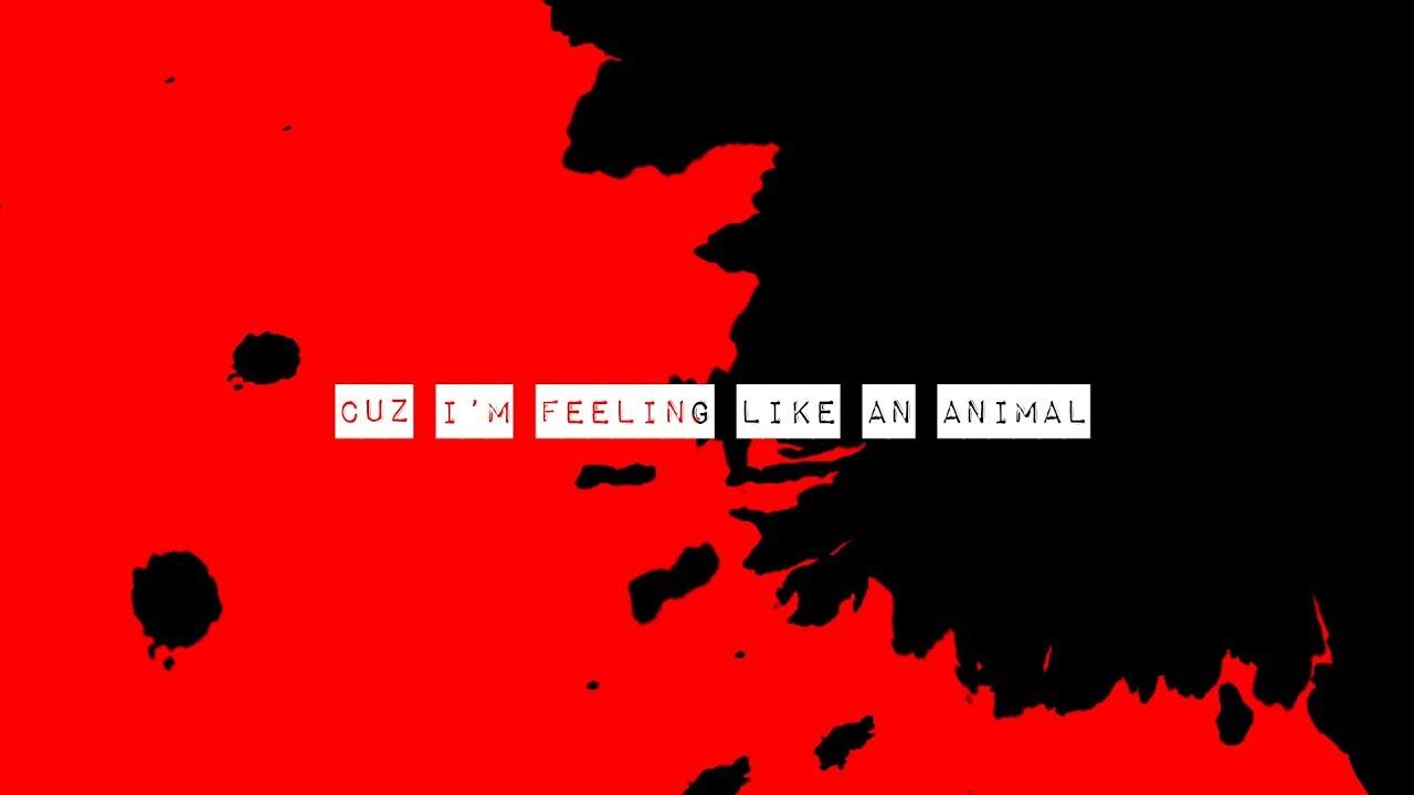 Sleater-Kinney - ANIMAL (Official Lyric Video)