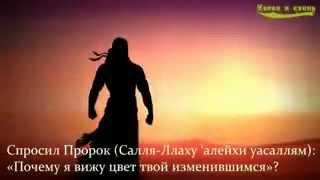 описание ада со слов ангела Джабраила (мир ему)