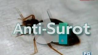 Good News: Huling Hirit ng Surot!