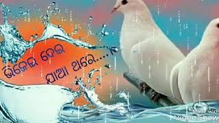 Bhijei dei jaa thare priya to prema barsare...