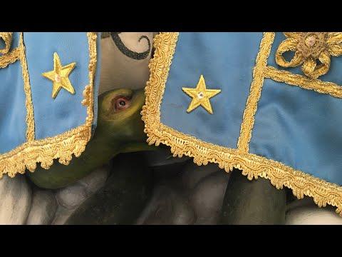 Новото познание E08 S02 Кои са истинските властелини на света?
