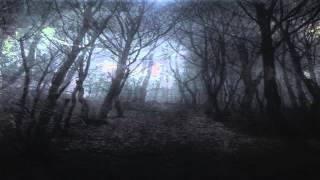 Old Land Of Darkness - Hopeless Cold Nightwish