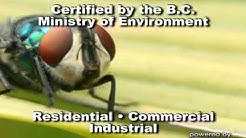 Green Valley Pest Control Ltd - (604)861-9530