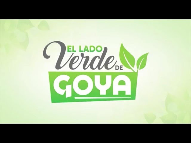 Desodorante de Limón Goya  - Luisa de los Rios