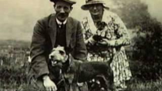 Lakeland Terrier part 1