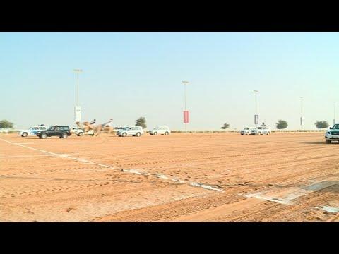 أخبار خاصة | مشاركة شبابية واسعة في -ماراثون الهجن- بمدينة دبي  - 14:22-2017 / 12 / 3