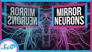 What Do Mirror Neurons Really Do?