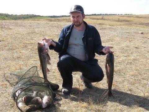 рыбалка на толстолобика в донецкой области 2015 куда поехать