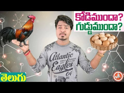 What Came First? Chicken or The Egg | In Telugu with English Subtitles | Vikram Aditya | EP#23