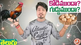 What Came First? Chicken or The Egg | Interesting Facts in Telugu | Vikram Aditya Videos | EP#23