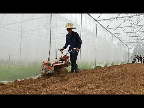 สาธิตการใช้รถพรวนดิน รถยกร่อง และเทคนิคการปลูกผัก ให้ผู้ที่เข้าเรียนรู้เกษตรอินทรีย์