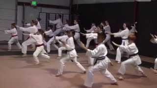 Kanzen Karate Do 7 Minute Introduction