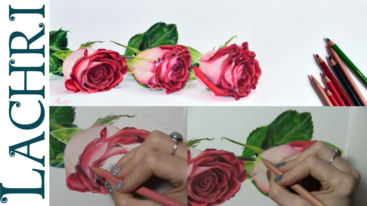 tips on how to draw a rose in colored pencil w lachri youtube