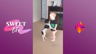 TRY NOT TO LAUGH - Funny Kids and Dogs Fails Compilation 2019   Best Kids and Dogs Fails Video