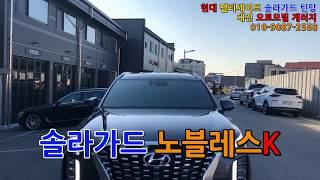 팰리세이드 신차 썬팅 솔라가드 노블레스K / 오토모빌게…