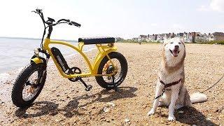 Laika the Husky gets the Addmotor MOTAN M-60 Electric Bike!