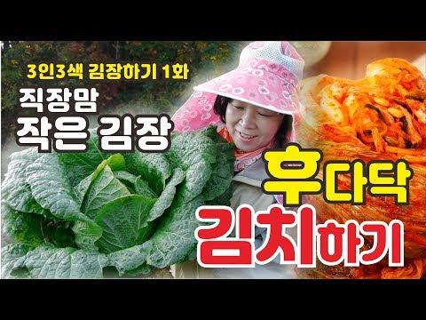 직장맘 김장하기, 김장, 배추수확, 김치, 순무김치,  Making Kimchi In A Hurry, Turnips,  Chinese Cabbage