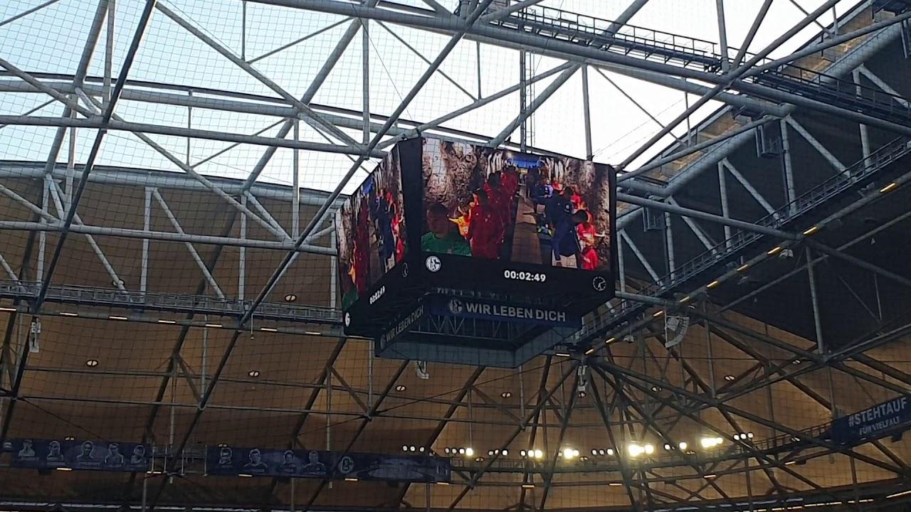 Aufstellung Schalke