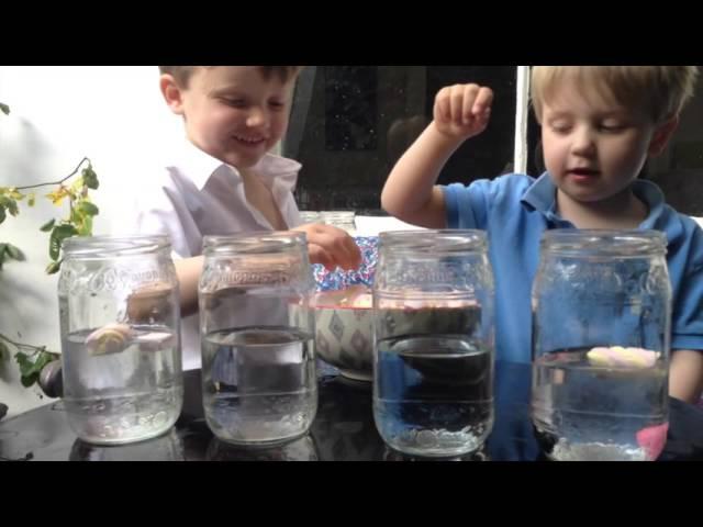 Flyter eller sjunker - bNosy Enkla Experiment för Barn 9