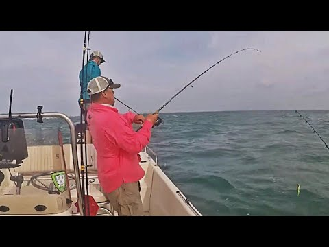 Saltwater Fishing Day 1 - Siesta Key, FL - Grouper, Snapper, & Trout