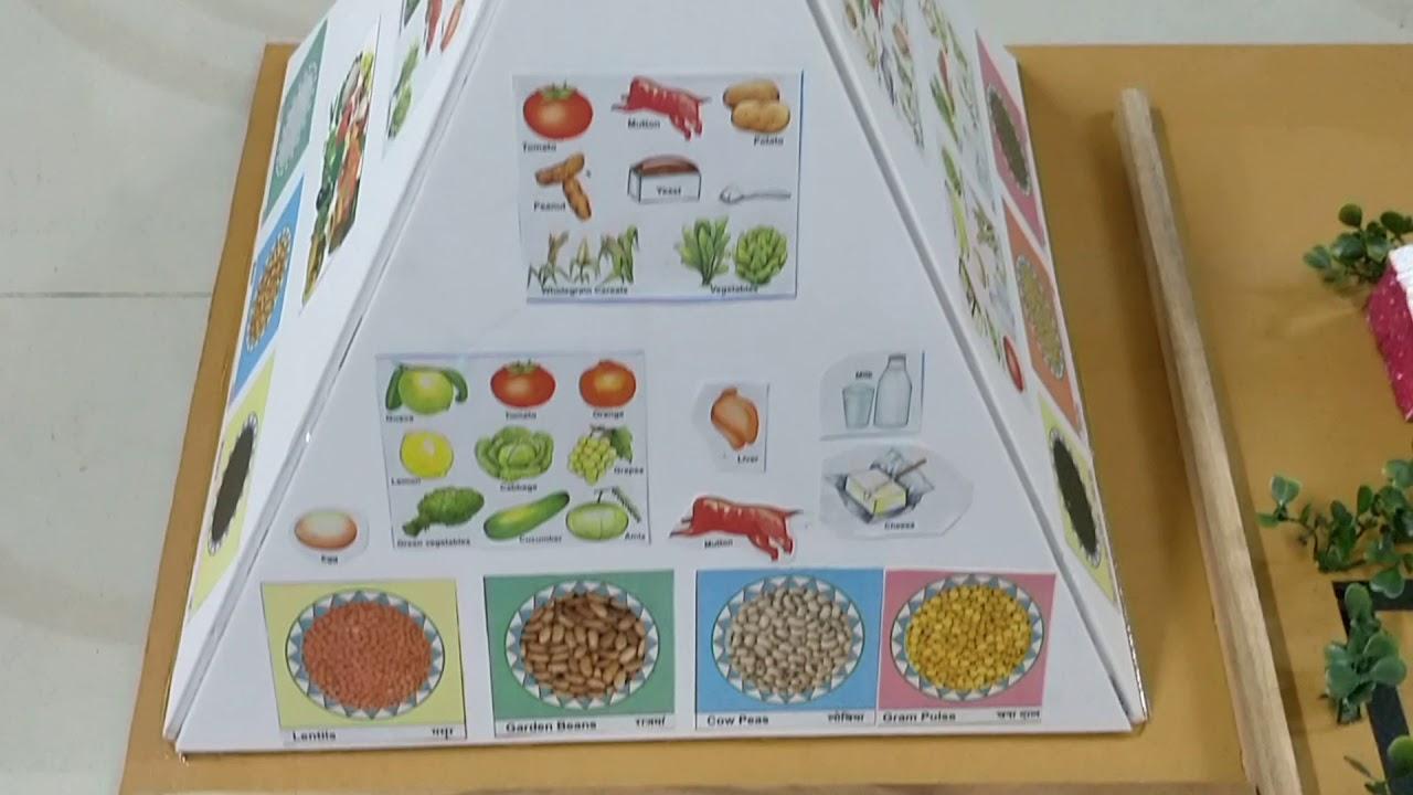 Good health, food and hygiene - model