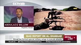 IGAD Report: Military unit set up to plot attacks on Ethiopia