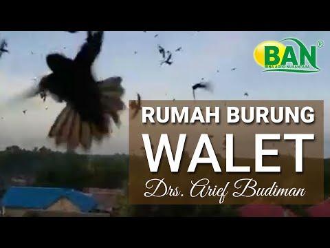 GEDUNG WALET BP. ARIEF BUDIMAN DI KERENG PANGI
