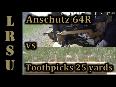 Anschutz 64R vs Toothpicks at 25 yards - 22LR Markmen Challenge