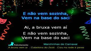 Baixar Marchinhas de Carnaval   A bruxa vem aí   Cabeleira do Zezé   Caiu na rede é peixe  - Karaokê