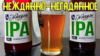 #209: НОВИНКА МПК. Обзор пива ЖИГУЛИ IPA (русское пиво).