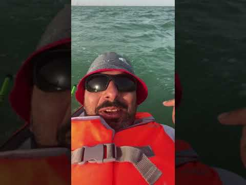Power kite kayaking 2018 kuwait