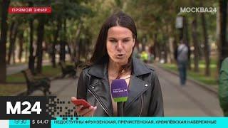 В Москве проходит второй день фестиваля циркового искусства - Москва 24