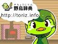 野鳥辞典/鳥の動画/雲雀(ヒバリ)の鳴き声