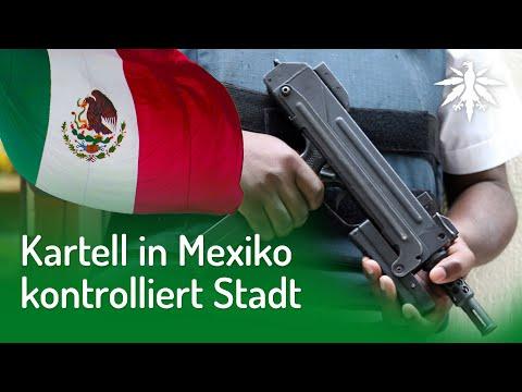 Kartell In Mexiko Kontrolliert Stadt | DHV-News #249