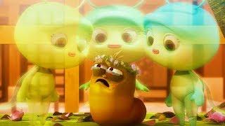 LARVA - ANGELS | Cartoon Movie | Cartoons For Children | Larva Cartoon | LARVA Official