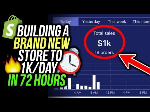How I Built A NEW Shopify Store To $1k/Day In 72 Hours! (Shopify Dropshipping 2018)
