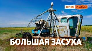 Вода из канализации. Новые технологии полива в Криму | Крым.Настоящий ТВ